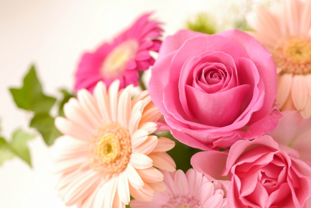 母の日に贈る花