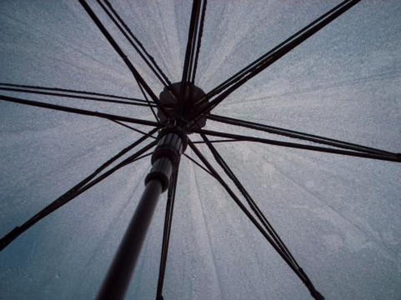 父の日に傘をプレゼントしてみる