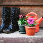 梅雨の長靴