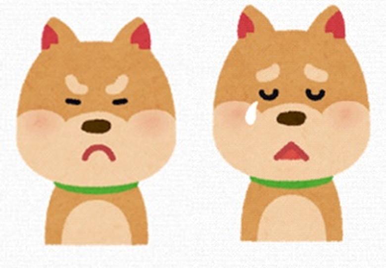 怒っている犬と悲しんでいる犬