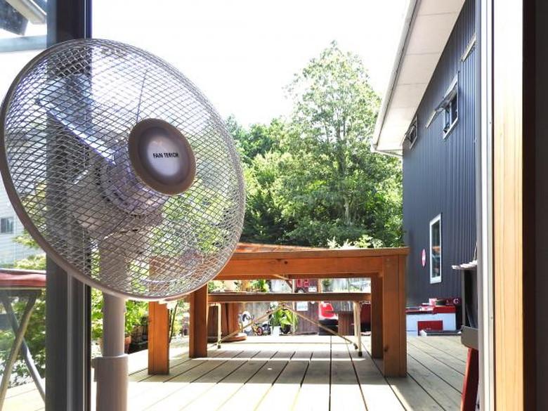 夏の必需品、扇風機