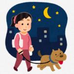 犬の夜の散歩