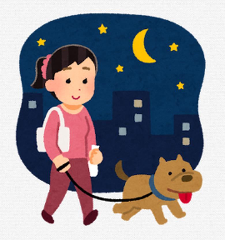夜に犬と散歩