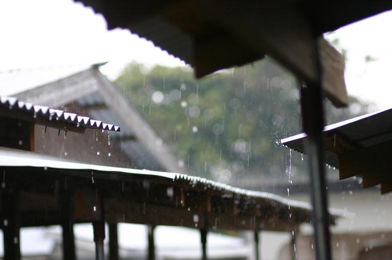 梅雨は屋根で雨をしのごう