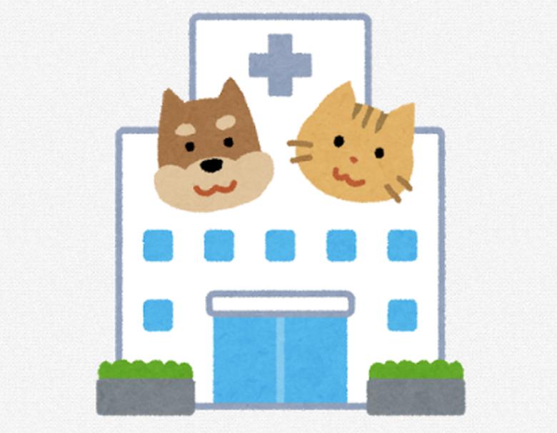 犬猫の病院